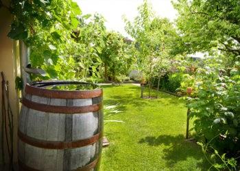 T.I.P. Tauchpumpen Garten